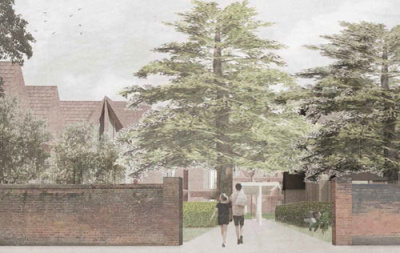 Viewing the cedars from Banbury Road