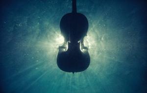 Violin in the sea
