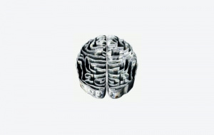 Brain in greyscale
